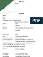 Dr Chavez Pancreas