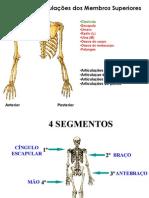 Garcia_MembroSup_OsteoArtro