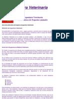 Acupuntura_veterinaria_Moiron