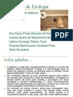 SEMINÁRIO DE ETOLOGIA