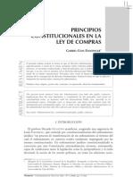 Principios_constitucionales-Celis