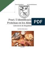 Practica de Proteínas