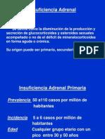 Insuficiencia Adrenal MEDICINA 1 Clase 2011