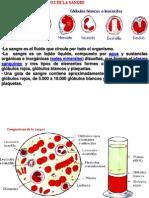 componente de sangre