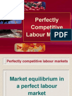 Perfectly Competitive Labour Markets