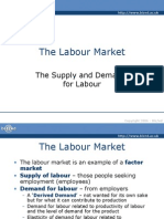 The Labour Market Supply and Demand