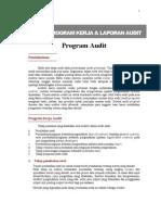 Audit Program