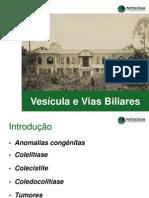 Patologia Vias Biliares, Pâncreas e Hepática I
