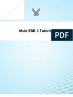 Mule Esb 3 Tutorial