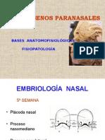 06-10 Embriología Nasal