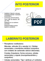 1-12 Laberinto Posterior