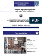Mathematical Model of Biomass Pyrolysis Ad Gasification in Lab-Scale Packed-Bed System
