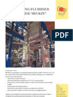 BIVKIN_Circulating Fluidized Gasifier