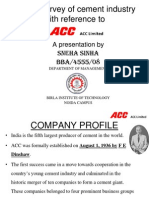Market Survey of Cement Industry by Sneha