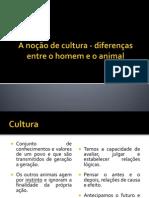A noção de cultura - diferenças entre o pdf