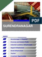 Surendranagar District Profile