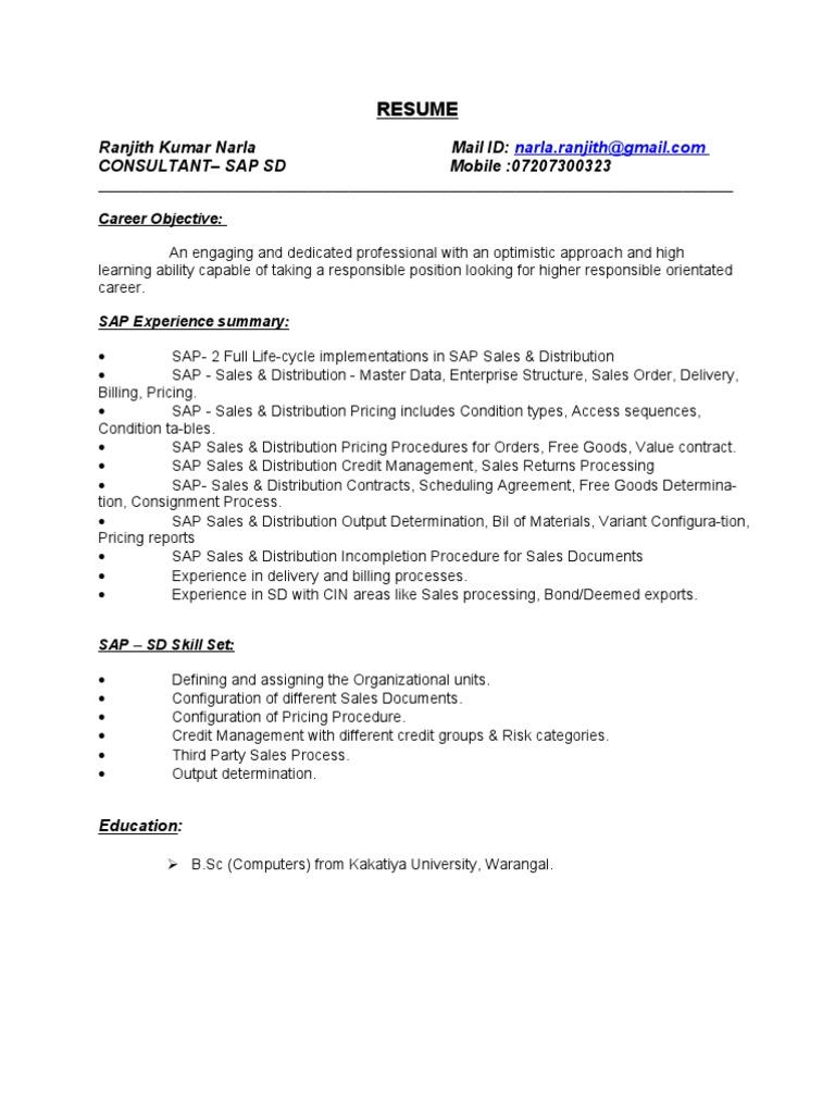 Sap SD Consultant Resume | Computer Network | Cosmetics