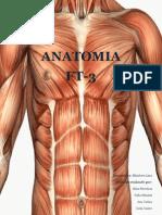 Trabalho de Anatomia (Tecido Muscular)