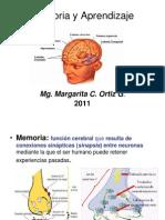 Memoria_y_Aprendizaje