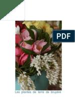 Roué Pépinières - formation plantes de terre de bruyère 2011