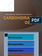 CARBOHIDRATOS;