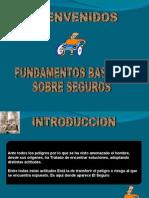 Laminas de SEGUROS[1]