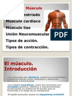Fisiología Muscular, Movimiento y Aparato Locomotor