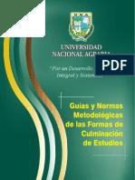 Guias y Normas Metodolo Culminacion de Estudios