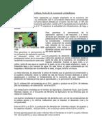 Economia en Colombia