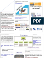Tríptico_Informativo_SGEG ck