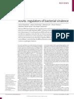 RNAs Regulators of Bacterial Virulence