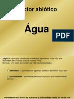 factores abióticos - água e solo