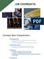 Lecture 7 & 8 - Chordata and Marine Biodiversity