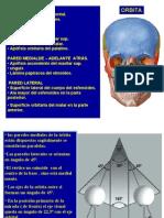 6ta Clase Cabeza Fosa Optica - Dr. Correa