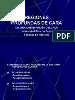 3ra Clase Cabeza - Fosas Profundas - Dr. Espinoza