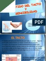 SENSIBILIDAD Y TACTO