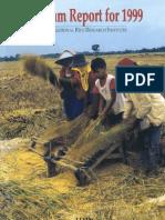 Program Report for 1999