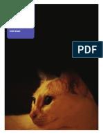 November PDF
