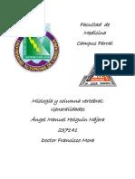 General Ida Des de La Miologia