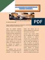 Tema 2 Revista Diplomado mARIANA