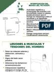 Traumatismos en Cadera y Pelvis en El Adultos (Vidal)