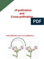 Self-Pollination & Cross Pollination
