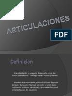 ARTICULACIONES - I.M
