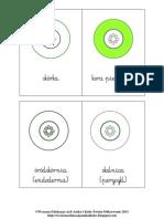 Budowa Pierwotna Korzenia_karty Kontrolne Montessori