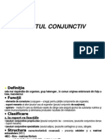 TESUT CONJUNCTIV c3
