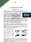 BIO PE 3 Evolucion (1)