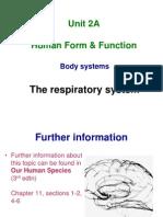 10. Unit 2 Respiratory System
