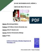 Práctica 3 microbiologia medica