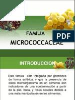Cap 10 Familia Micrococcaceae 2011[1]