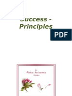 Success - Principles